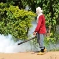 MAM Fumigation
