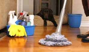 Apeshi Laundry and cleaning Services