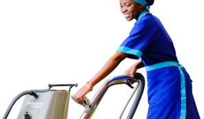 MOPS AND BROOMS – CLEANING AGENT – ABUJA